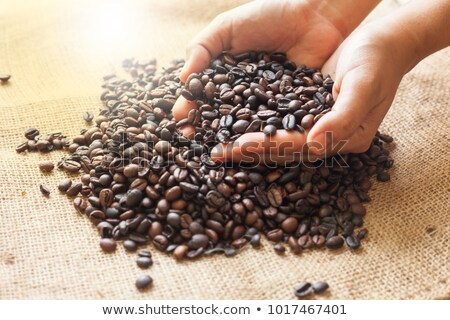 dispersing the sack of coffee beans stock photo © justinb