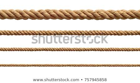 Liny w górę ogrodzenia po gospodarstwa budowy Zdjęcia stock © trgowanlock