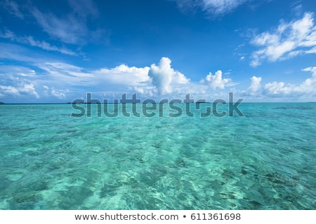 Pacific ocean with clouds. Stock photo © iofoto