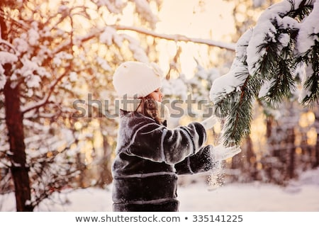 льда · сосна · дождь · зима - Сток-фото © icemanj