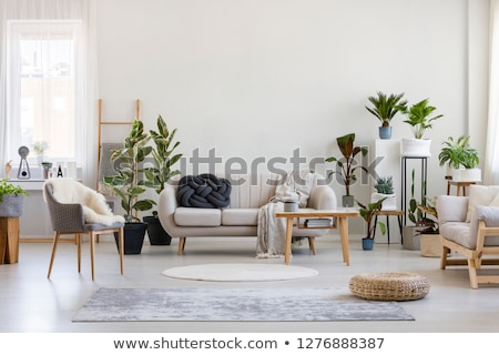 wooden house interior stock photo © podsolnukh