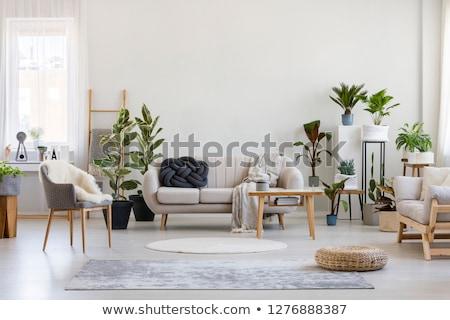 Fából készült házbelső modern belső ház fa Stock fotó © podsolnukh