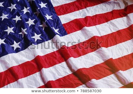 dag · Amerikaanse · vlag · vector · Blauw · Rood · vrijheid - stockfoto © bharat