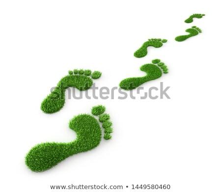 Groene voetafdruk ecologie gras hart wereld Stockfoto © sognolucido