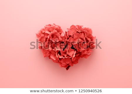 Stock photo: pink flower heart