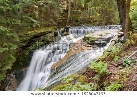 cachoeira · montanhas · sudoeste · Polônia · europa · árvore - foto stock © oxygen64
