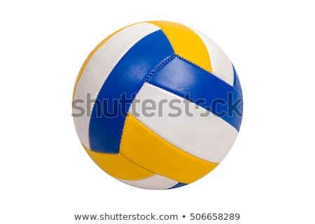 Vôlei bola branco mesa de madeira verde diversão Foto stock © Koufax73