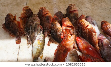 fish market in the old port of mykonos stock photo © sognolucido