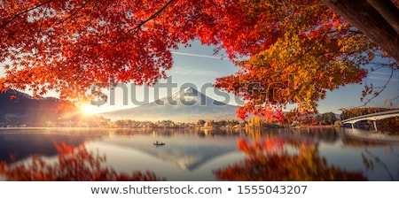 beautiful autumn landscape the lake in the morning fog stock photo © geribody
