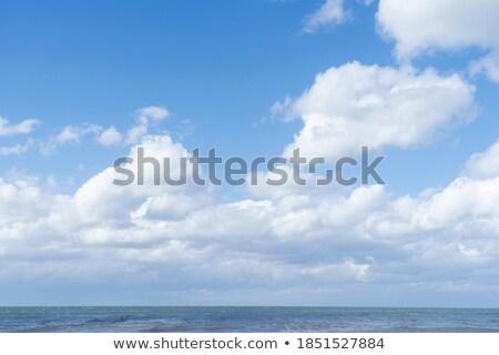 Tengeri kilátás tavasz természet tenger háttér szépség Stock fotó © olandsfokus