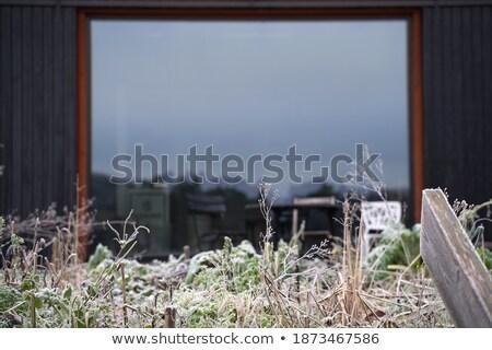 окна · Рождества · сезонный · иллюстрация · снега · зима - Сток-фото © dessters