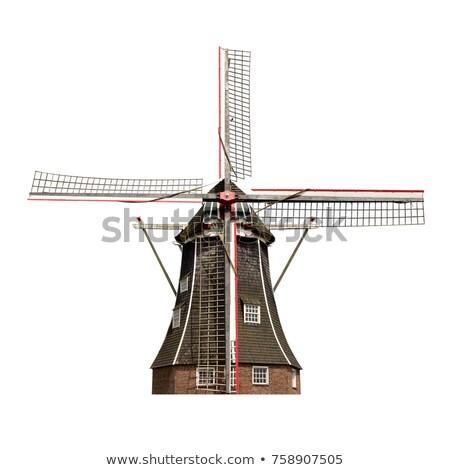 dutch windmills stock photo © njaj
