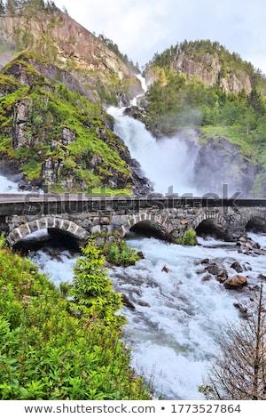 Wodospad Norwegia górskich krajobraz wcześnie wiosną Zdjęcia stock © master1305