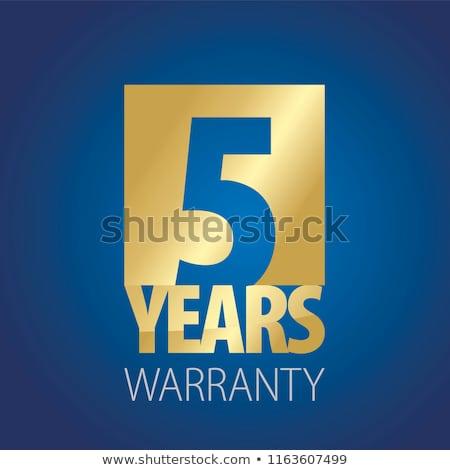 Jahre Garantie blau Vektor Symbol Design Stock foto © rizwanali3d