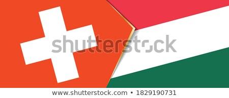 スイス ハンガリー フラグ パズル 孤立した 白 ストックフォト © Istanbul2009