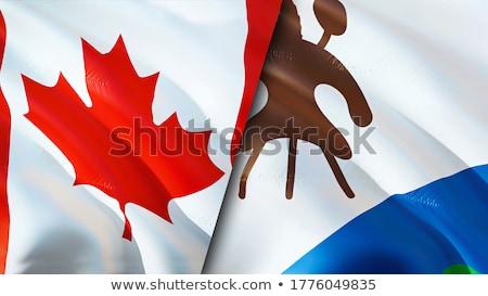 Канада Лесото флагами головоломки изолированный белый Сток-фото © Istanbul2009