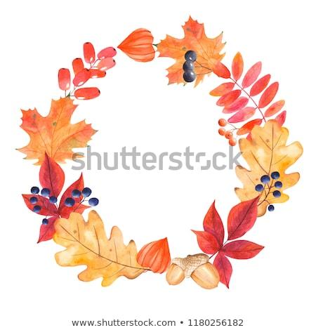 wreath with mountain ash berries Stock photo © Avlntn