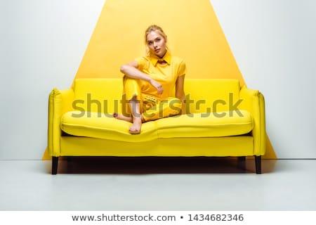 Nő pózol stúdió fiatal gyönyörű nő áll Stock fotó © hsfelix