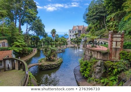 Kert Madeira sziget botanikus nyilvános zöld Stock fotó © compuinfoto