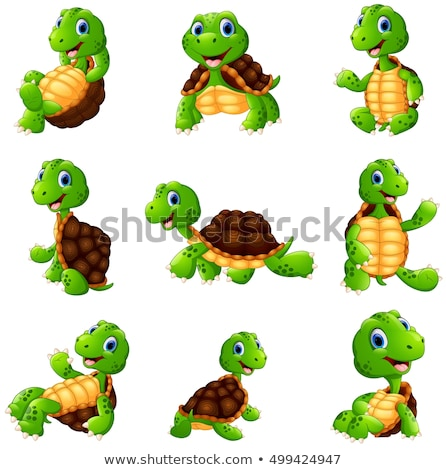 Turtle posing series Stock photo © zurijeta