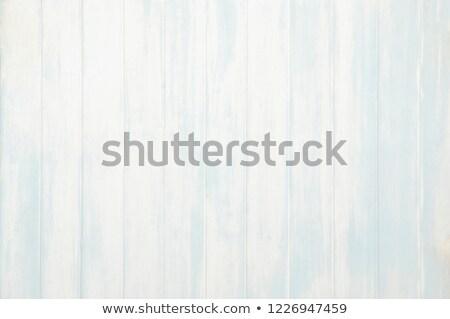 высушите древесины пляж отпуск время морем Сток-фото © bank215