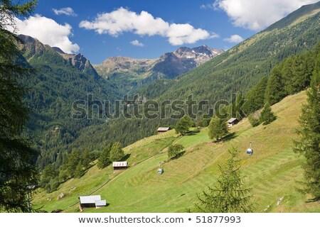 Wysoki dolinie lata widoku parku niebo Zdjęcia stock © Antonio-S