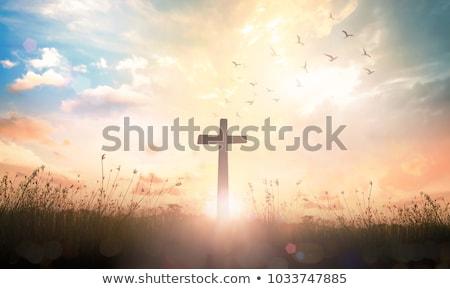 Szent kereszt ikon terv Jézus óceán Stock fotó © sdCrea
