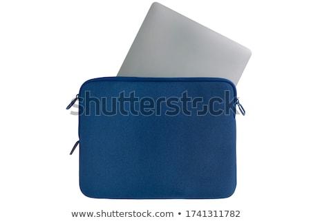 płótnie · akryl · teczki · odizolowany · biały · farby - zdjęcia stock © papa1266