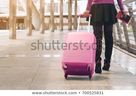 Nő bőrönd utazás jókedv táska szín Stock fotó © IS2