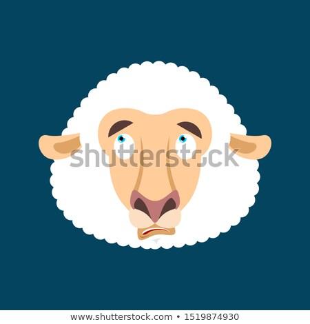 Sheep was confused avatar of emotions. Ewe is perplexed emoji. F Stock photo © popaukropa