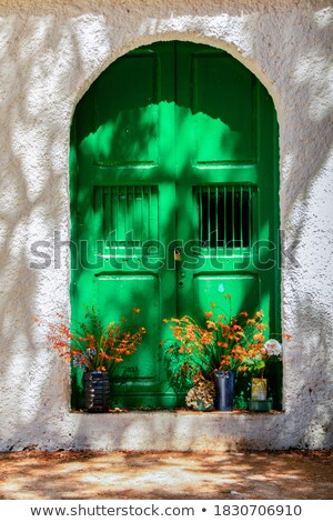 old wall with green locked door and flowers stock photo © mahout