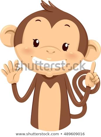 Mascotte scimmia sei illustrazione cute dita Foto d'archivio © lenm