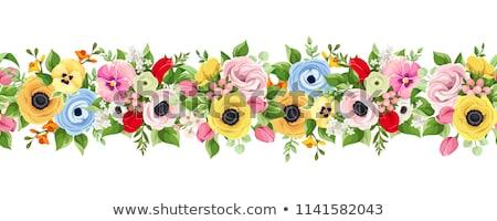 flowers border with frame stock photo © adamson