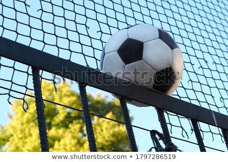 Black and white leather football against green background Stock photo © wavebreak_media