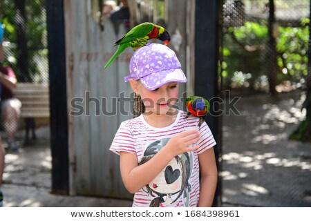 Verwonderd weinig papegaai cartoon illustratie naar Stockfoto © cthoman