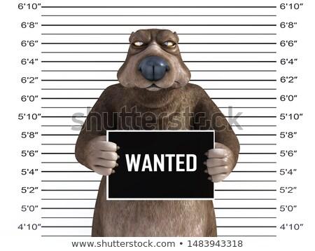 Cartoon boos dief beer naar dier Stockfoto © cthoman