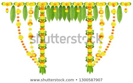 花輪 ドア マンゴー 葉 花 インド ストックフォト © orensila
