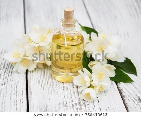 jasmine oil stock photo © hitdelight