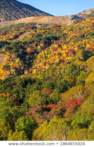 Fukushima Mountain bandai Autumn Fall Stock photo © vichie81