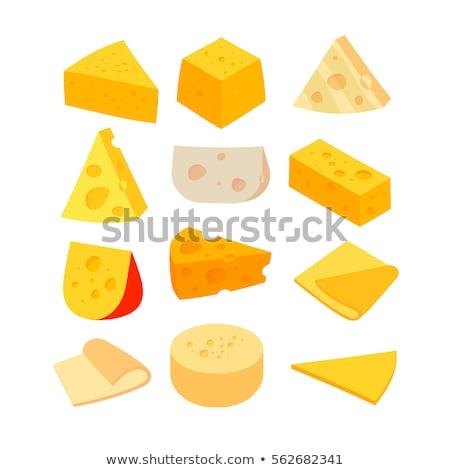 parmesan, italian cheese cartoon style Stock photo © doomko