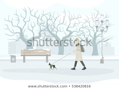 female walking with dog in winter park vector stockfoto © robuart