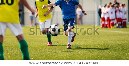 Group of Young Boys in Soccer Sportswear Running and Kicking Stock photo © matimix