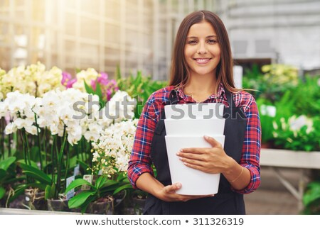 Kereskedelmi kertész virágok üvegház ipar dolgozik Stock fotó © Kzenon