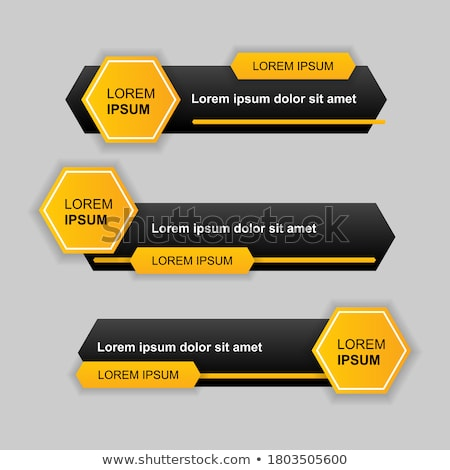 lower third style three business infographic template Stock photo © SArts