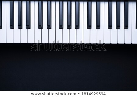 Stock photo: musician with keyboard