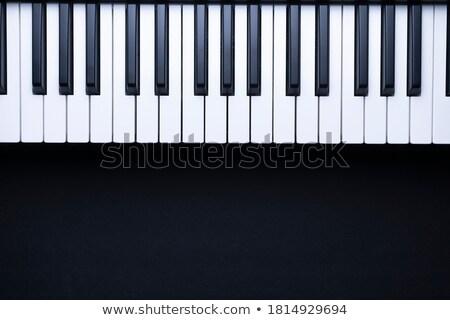 muzikant · hand · spelen · accordeon · lichaam · piano - stockfoto © paha_l