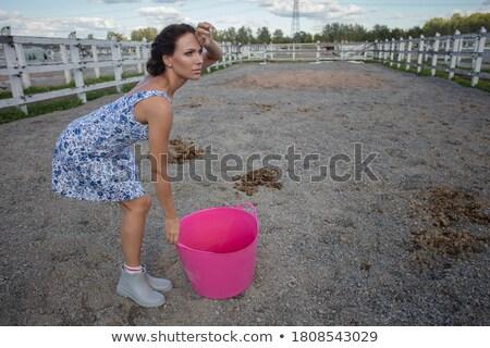 лошади женщину вверх улыбаясь Сток-фото © cynoclub