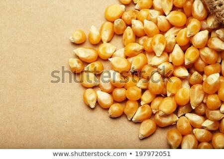 milho · sementes · textura · folha · ouro · cor - foto stock © ozaiachin