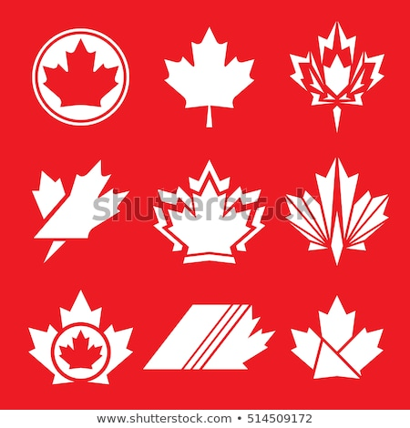 The set of the hockey symbolic icons in national colors Stock photo © perysty