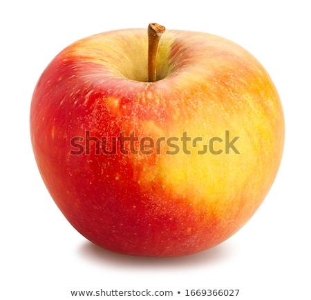 Single a red-yellow apple Stock photo © boroda